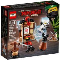 Уроки мастерства Кружитцу Lego (70606)